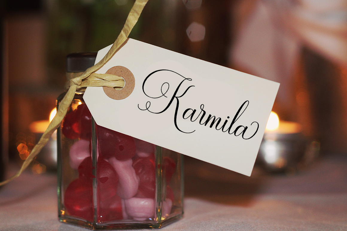 Ramolina Script example image 10