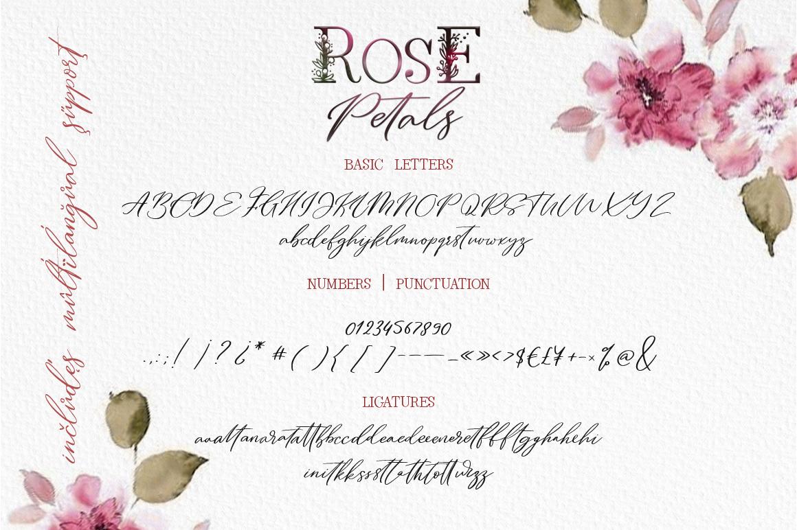 Rose Petals. Font duo Bonuses. example image 9