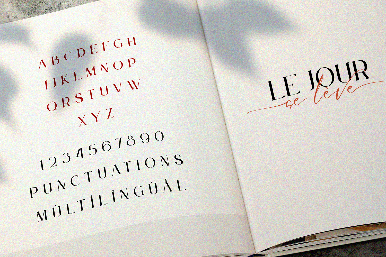 Le Jour -Font Duo example image 13
