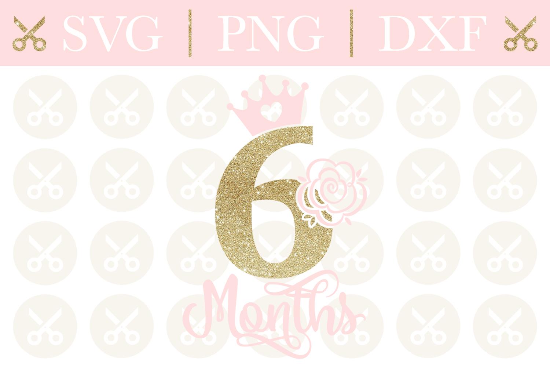 Half Birthday Svg 6 Month Birthday Svg Girls Birthday Svg example image 1