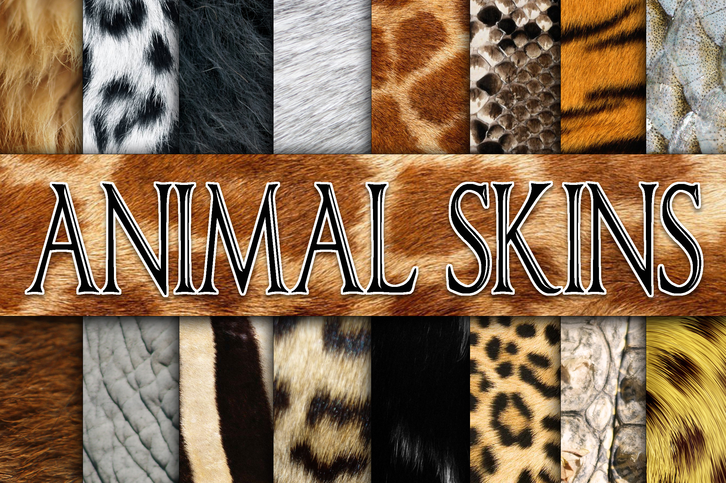 research paper on animal fur While the fur industry and animal rights  and now more than ever because the consumer has the ability to research and decide  today's paper.
