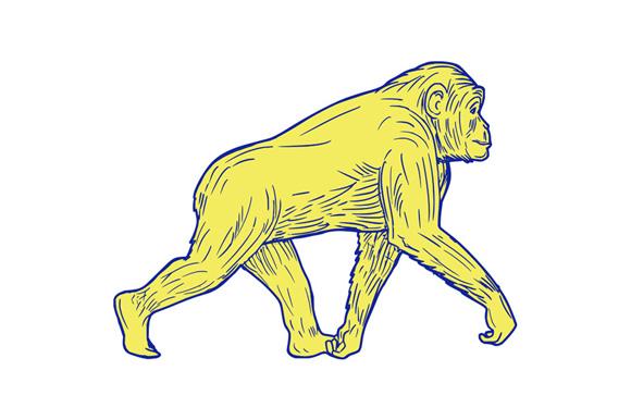 Chimpanzee Walking Side Drawing example image 1