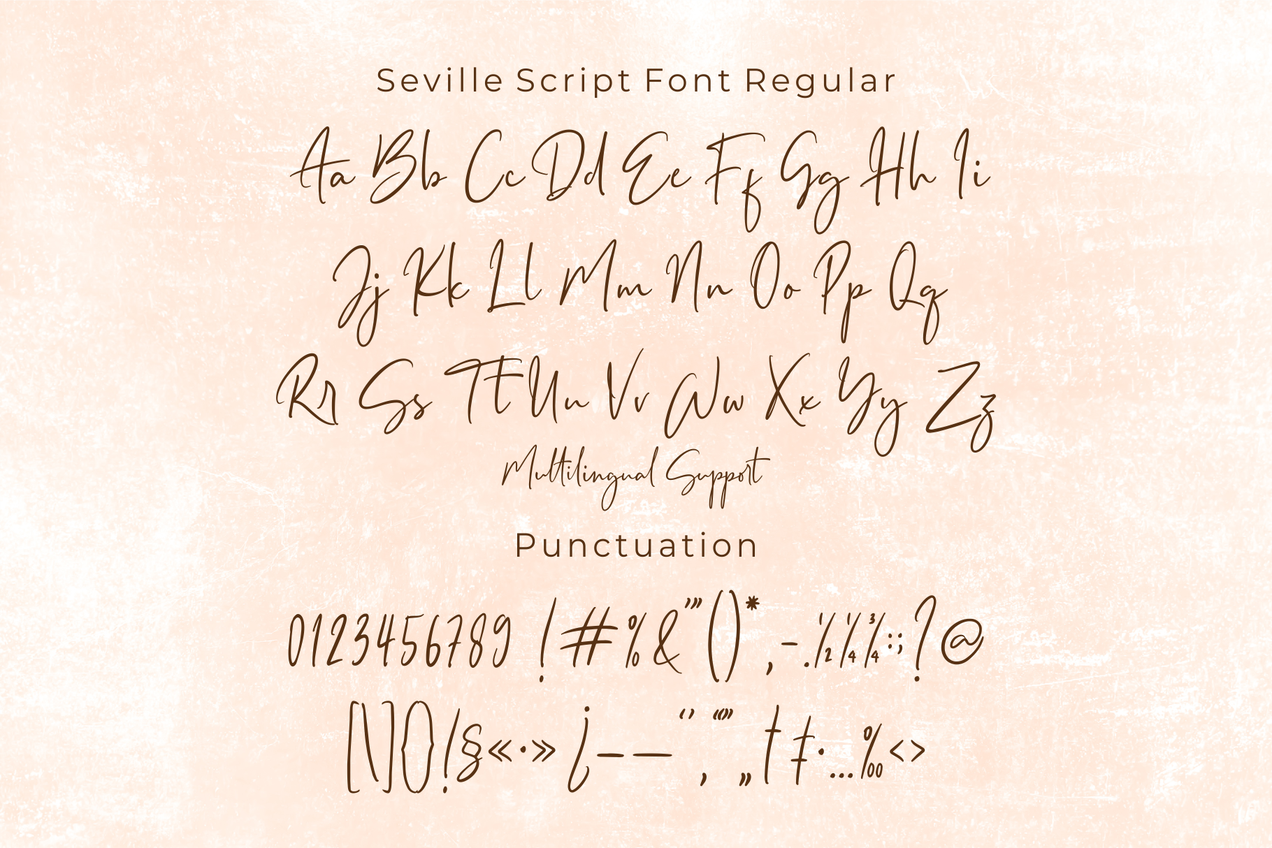 Seville Script Fonts example image 8