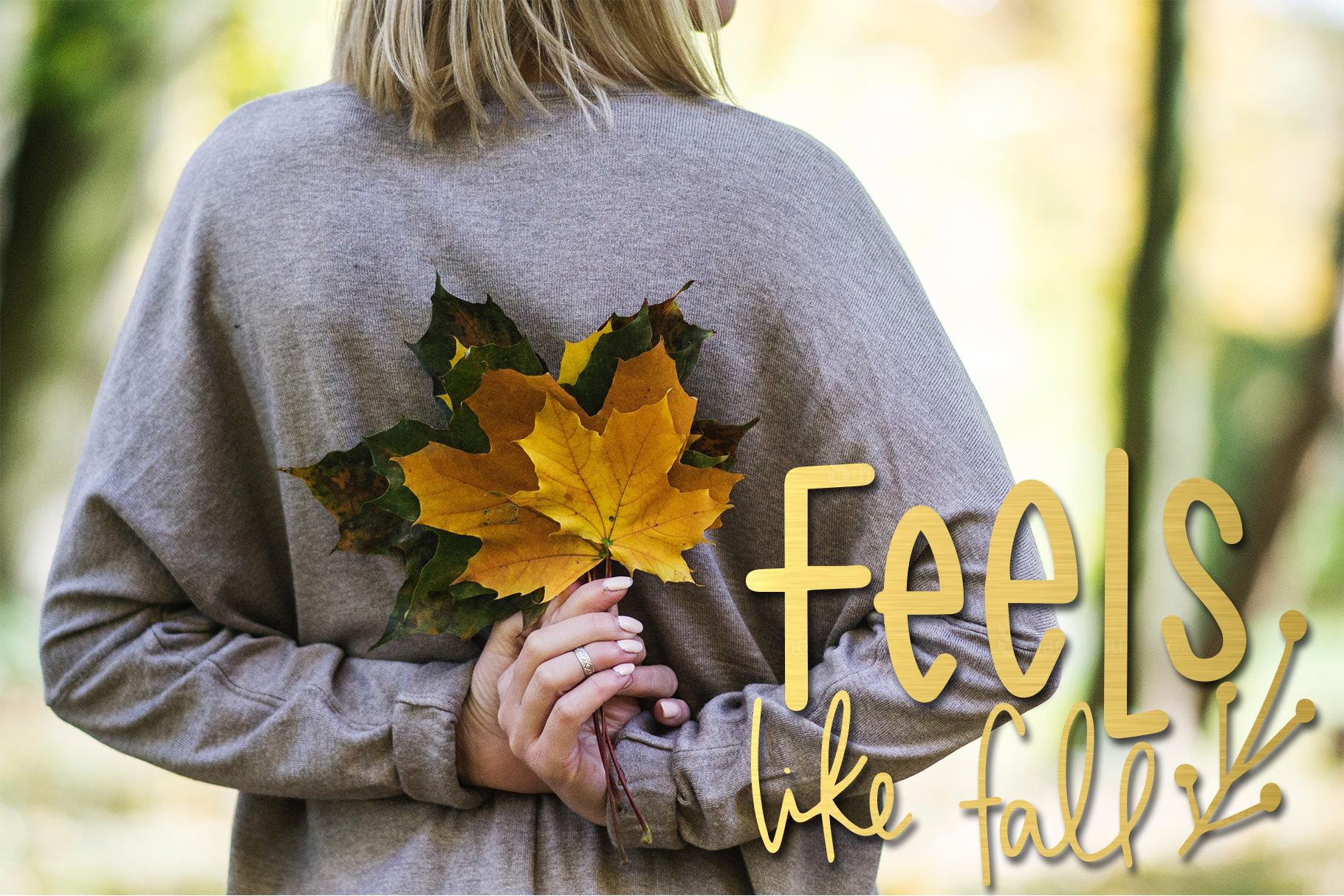 Fall Phrases Symbols Font example image 8
