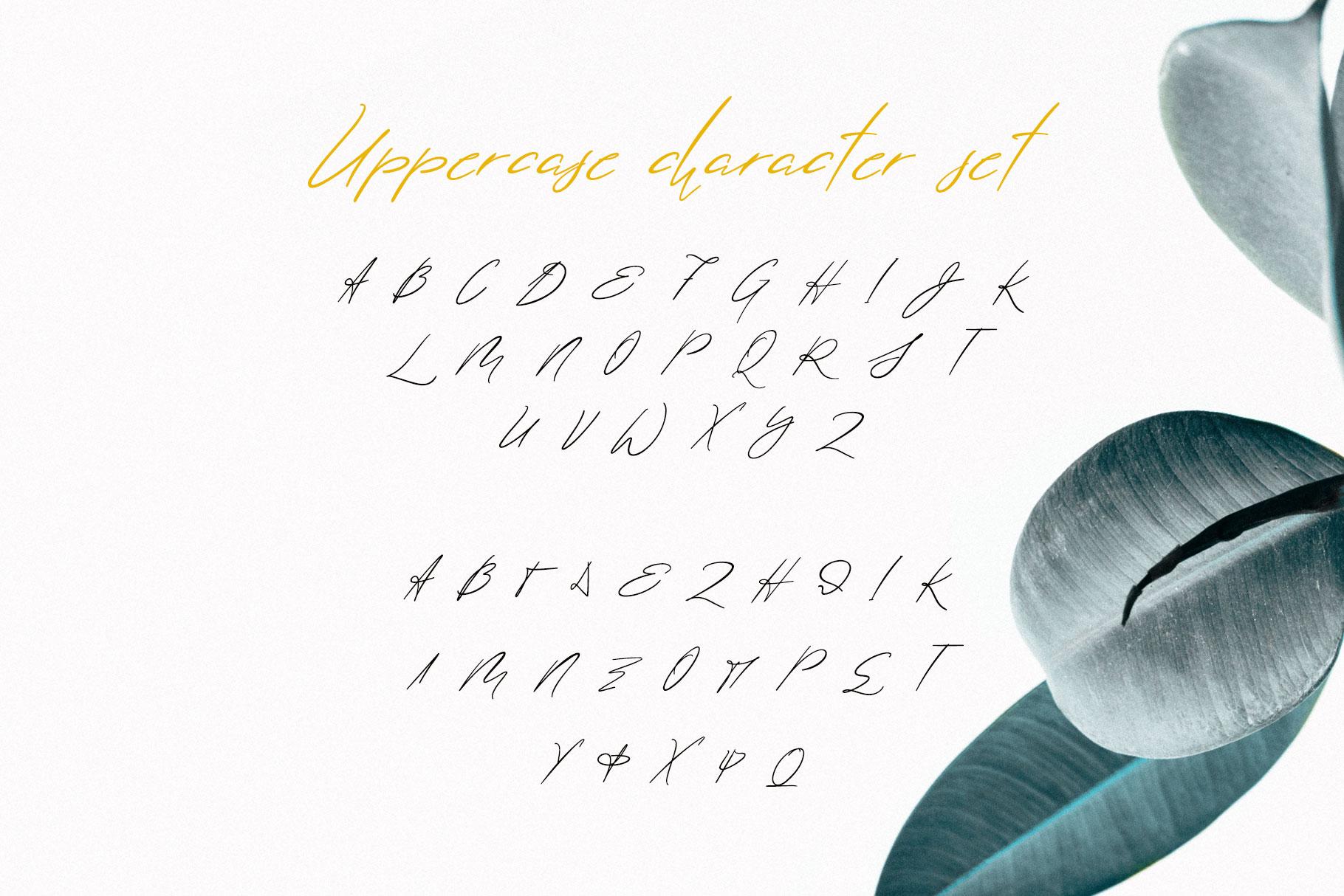 Lolotte Multilingual Signature Font example image 8