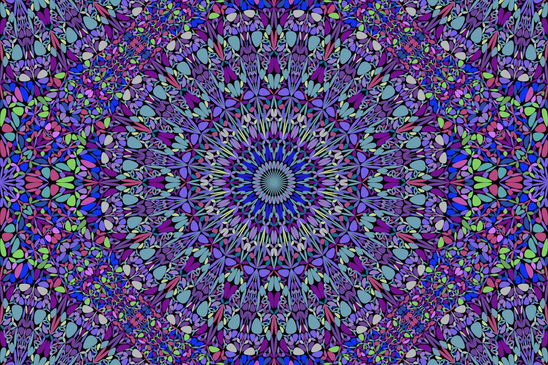48 Seamless Floral Mandala Patterns example image 7