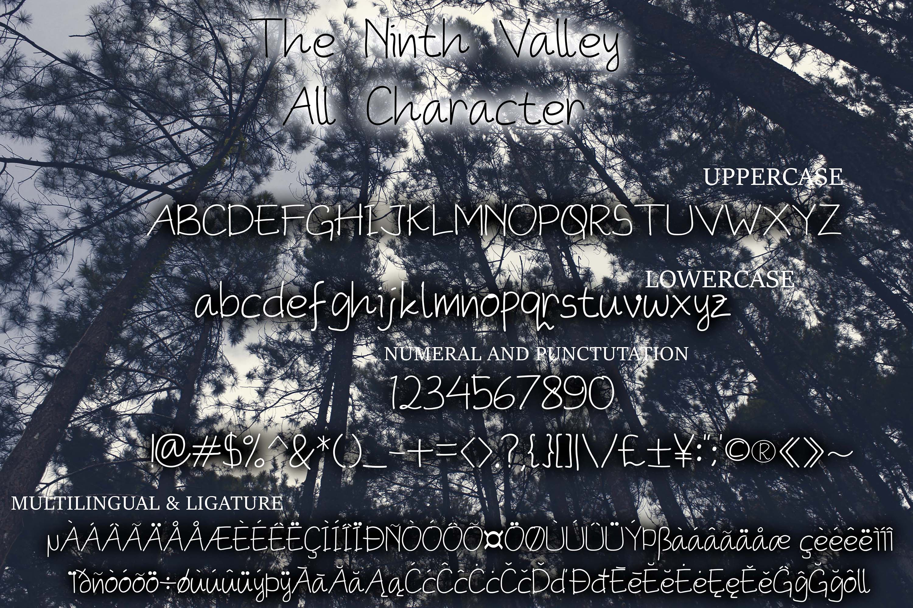 The Ninth Valley example image 2