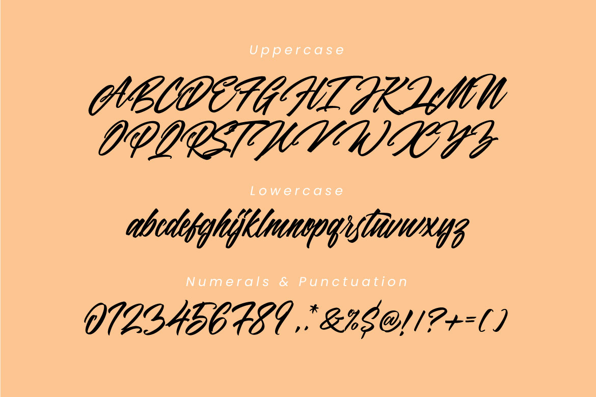 Panbers Script example image 6