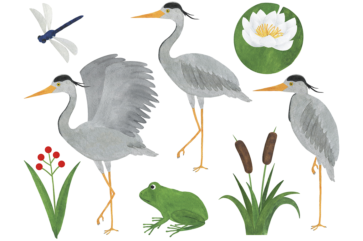 Set of heron watercolor illustrations example image 2