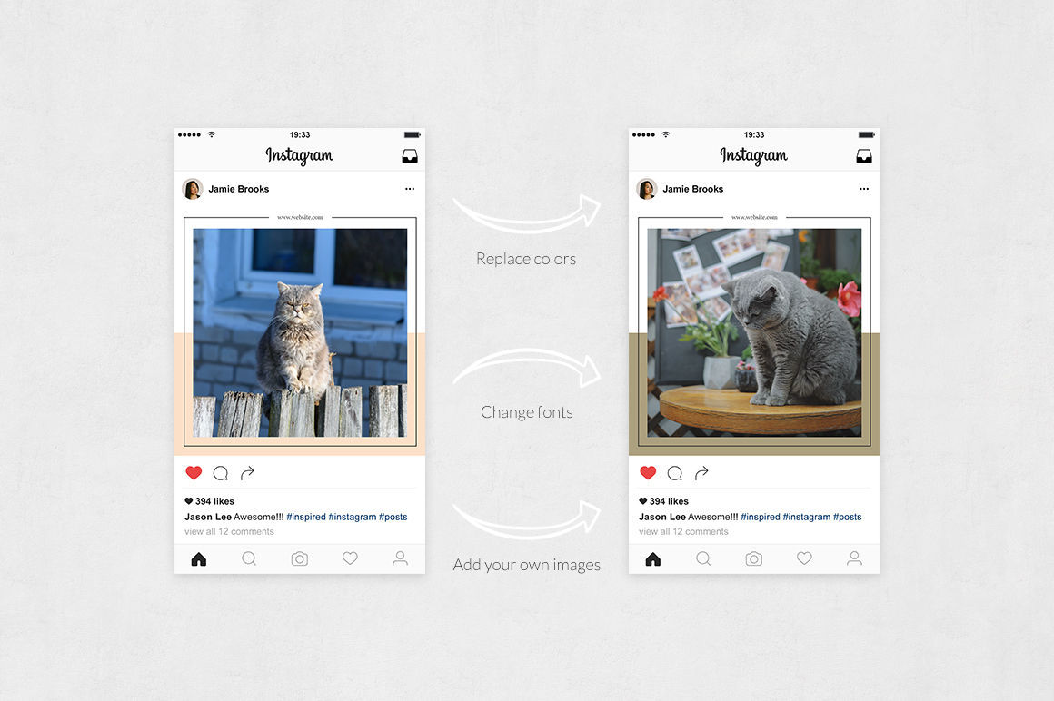 Cats Instagram Posts example image 5