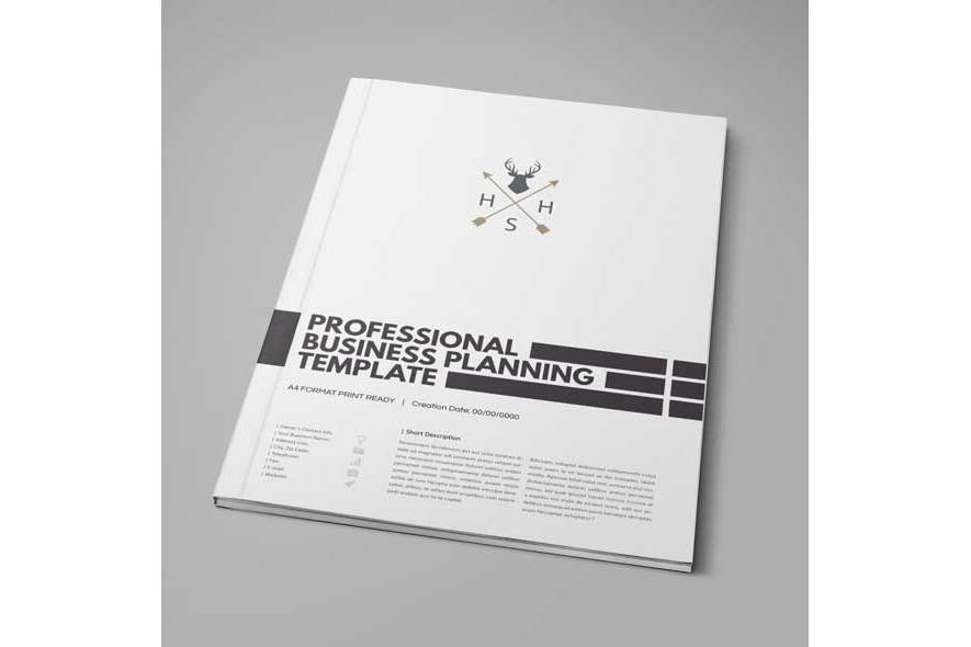 Professional Business Planning Template example image 2