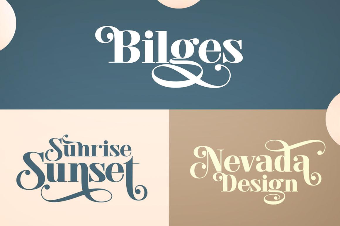 Elegant Sans & Script Font example image 7