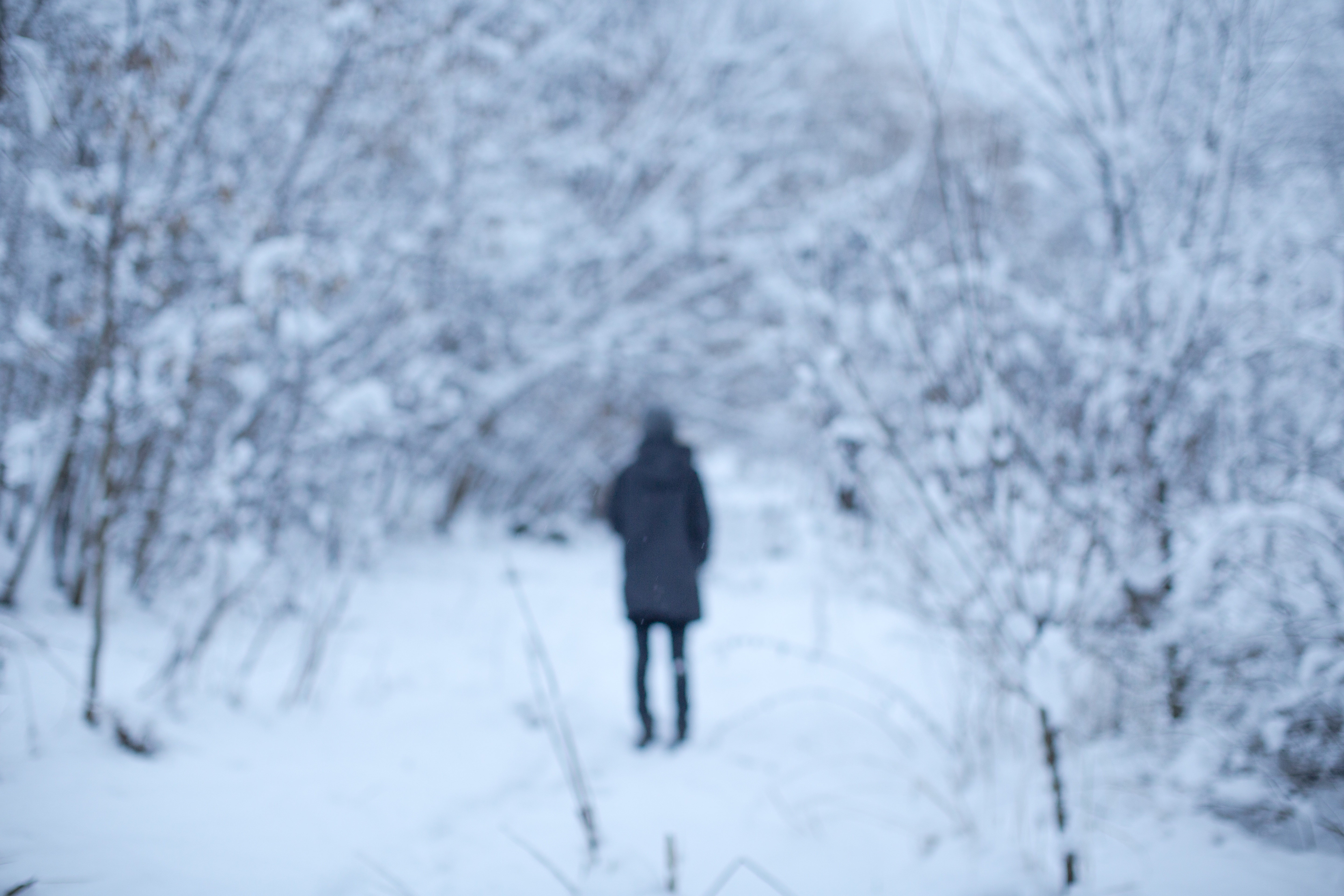 Blurred girl in snow forest example image 1