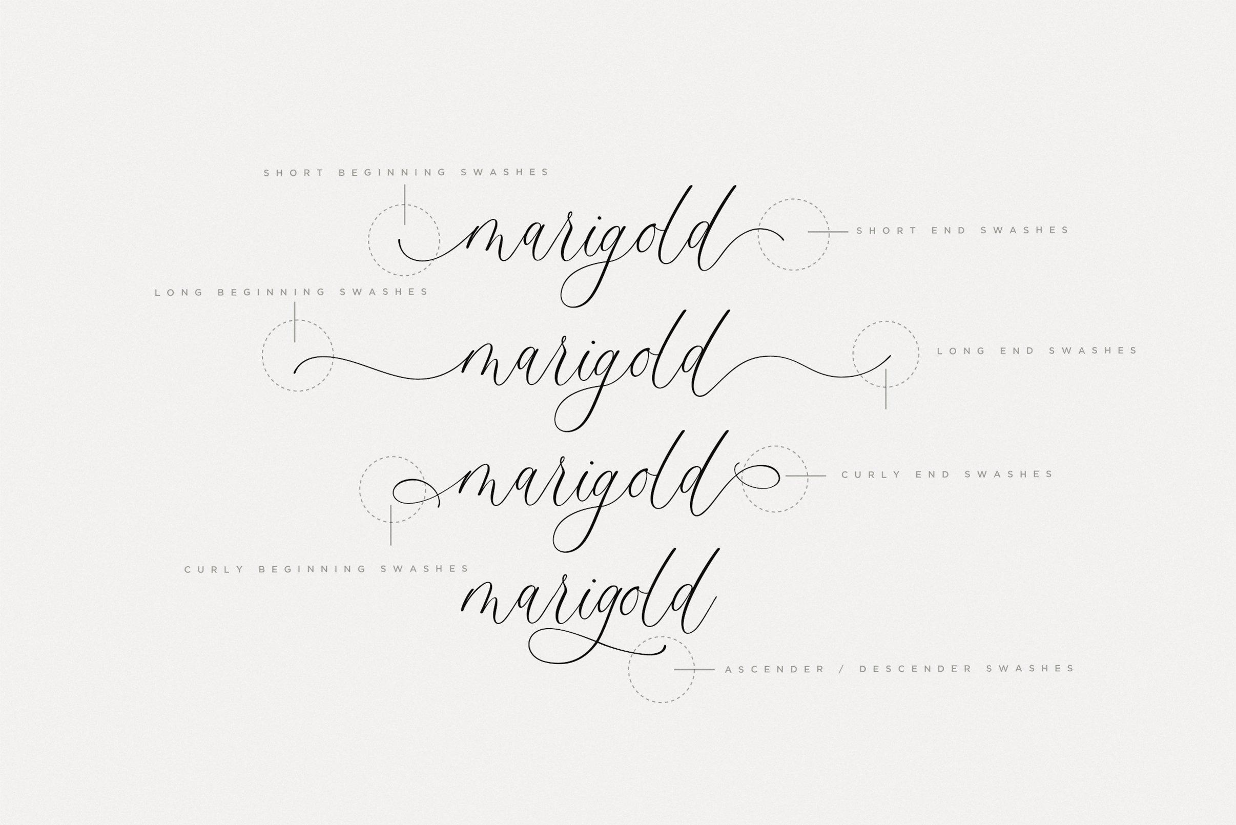Monterey Script Font example image 7