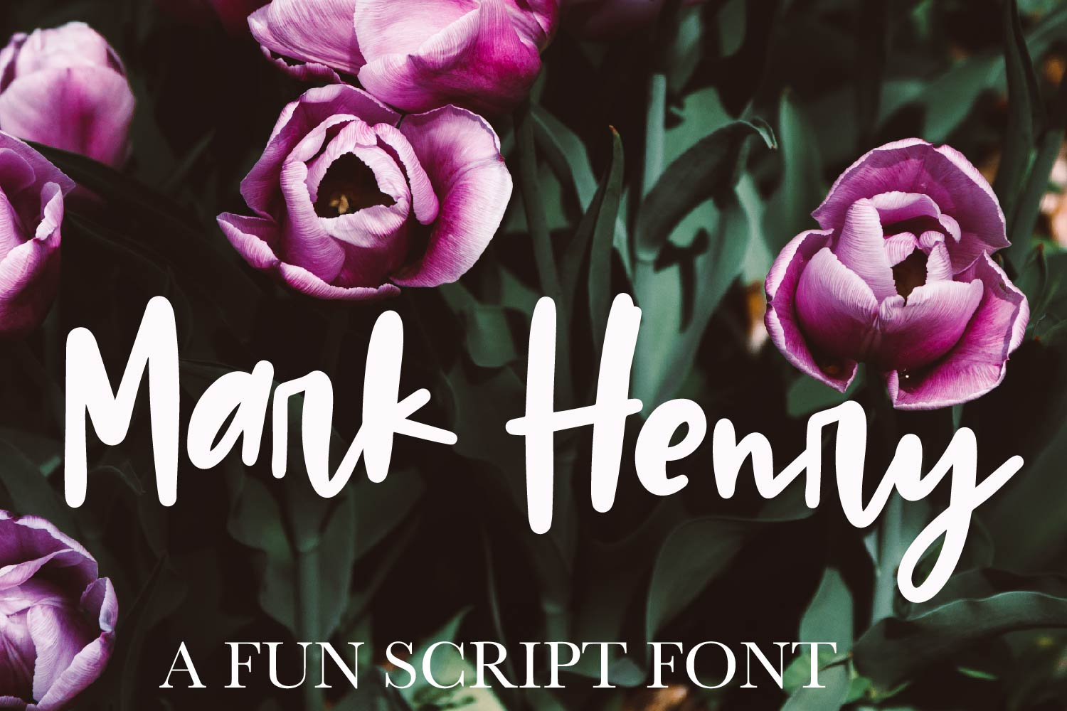 Mark Henry - A thick signature font example image 1