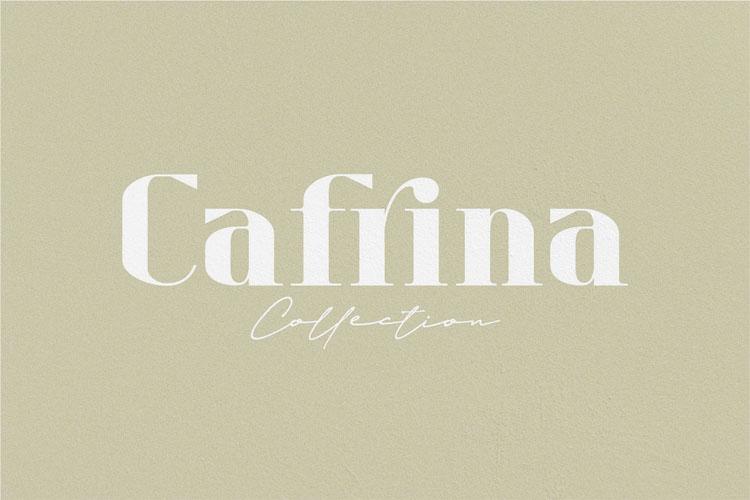 Refita. Modern Serif Font example image 2