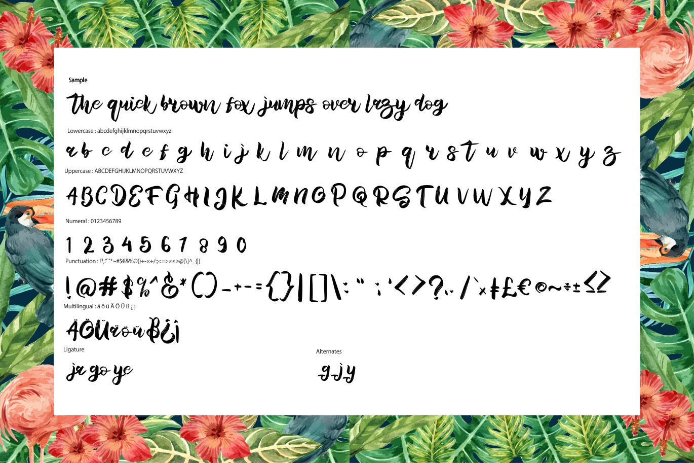 Hamble   Modern Style Script Font example image 6