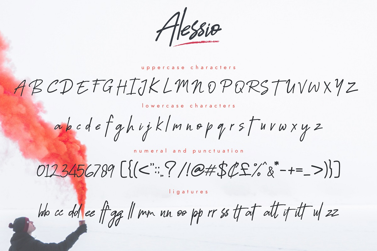 Alessio Brushed Script Font example image 2