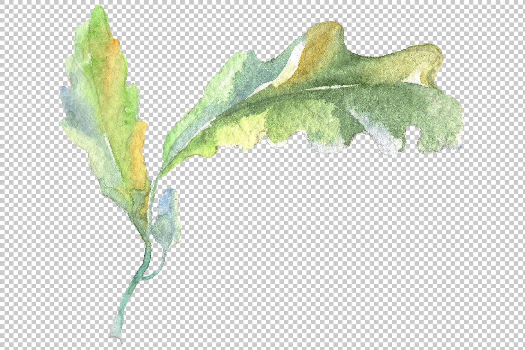 Acorn Watercolor png example image 2