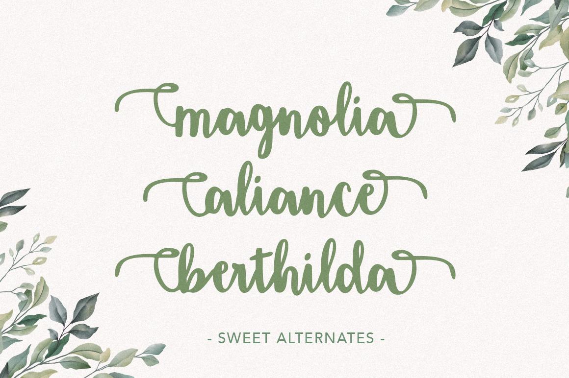 Amigueta Script example image 4