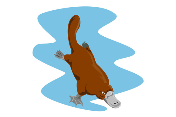 Platypus Diving example image 1