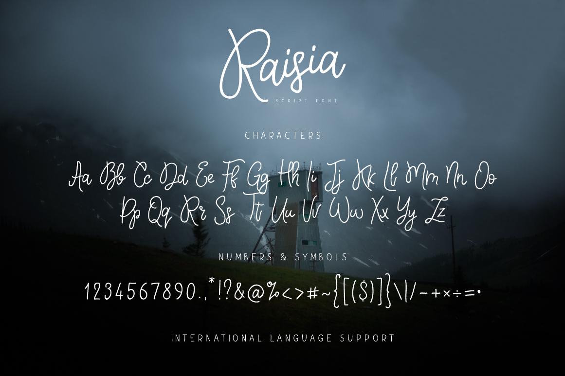 Raisia Script Font example image 6
