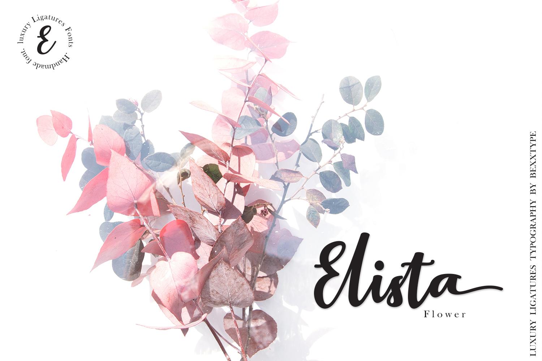 Elistabeta Script | luxury ligatures font example image 5