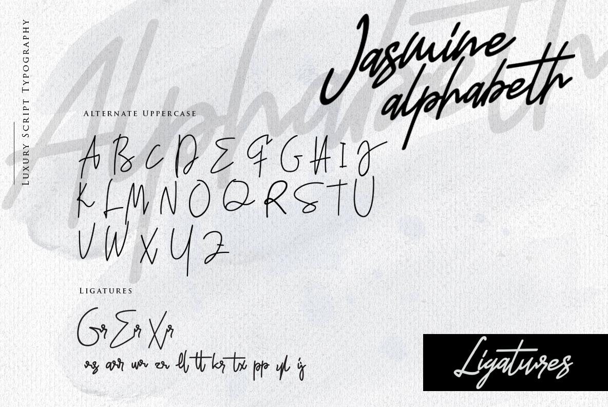 Jasmine Luxury Handwriting example image 12