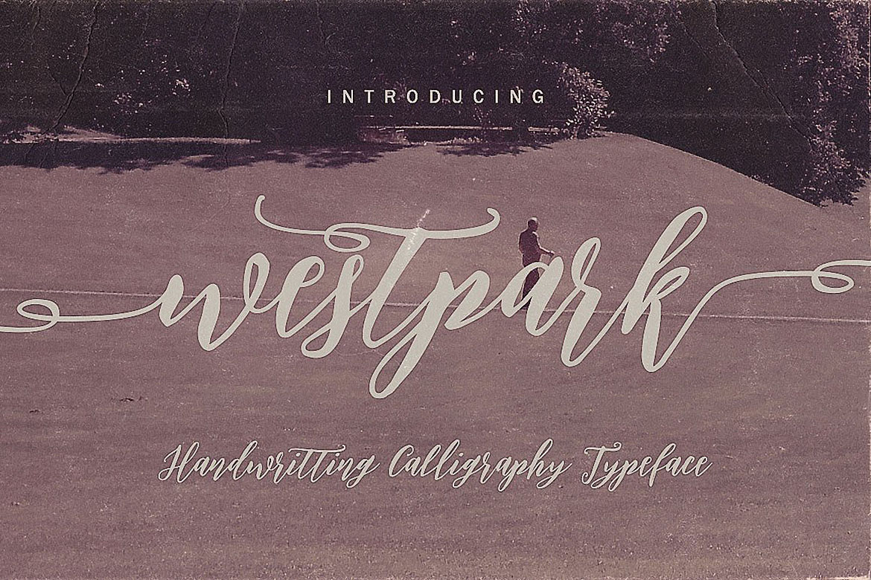 Westpark Script Font Duo example image 6