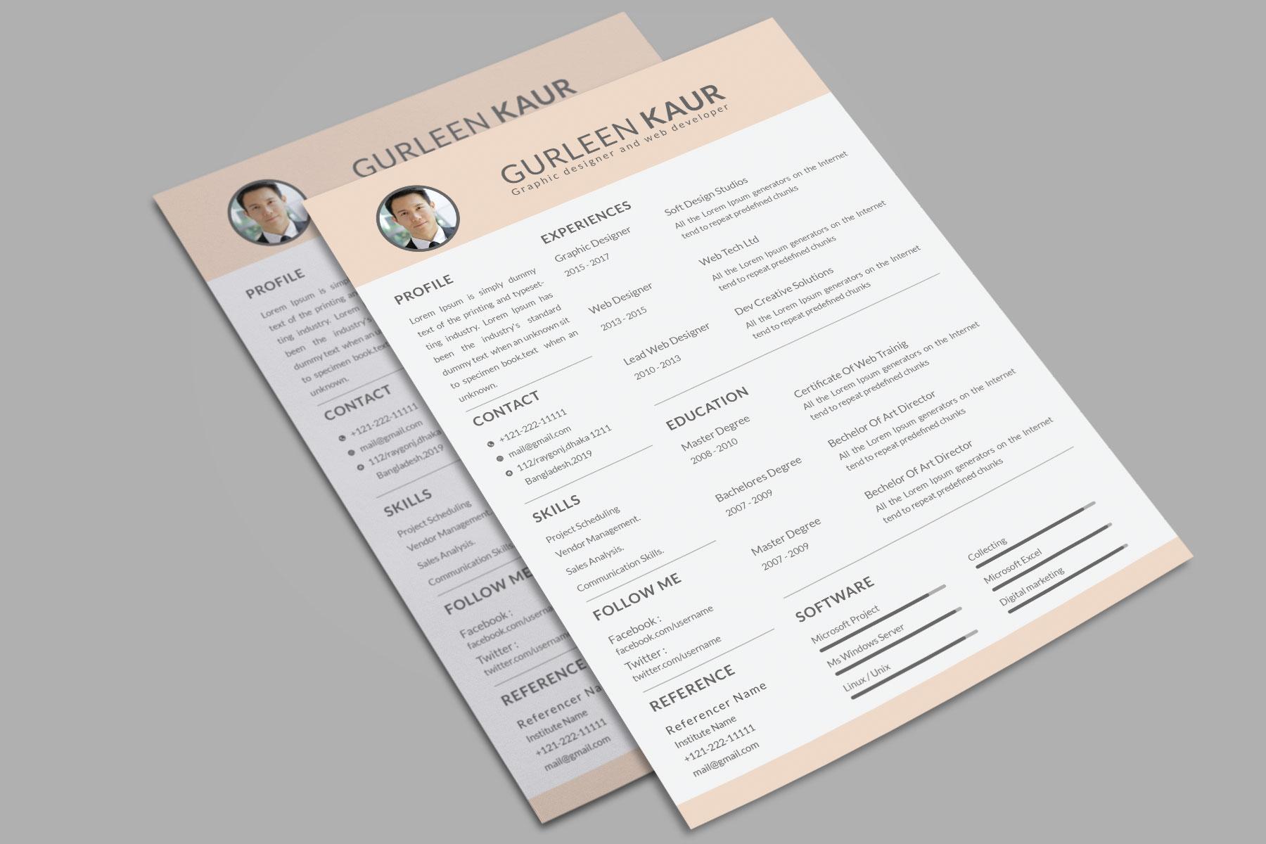 Professional Cv Resume Bonus business card Word/PSD,AI example image 10