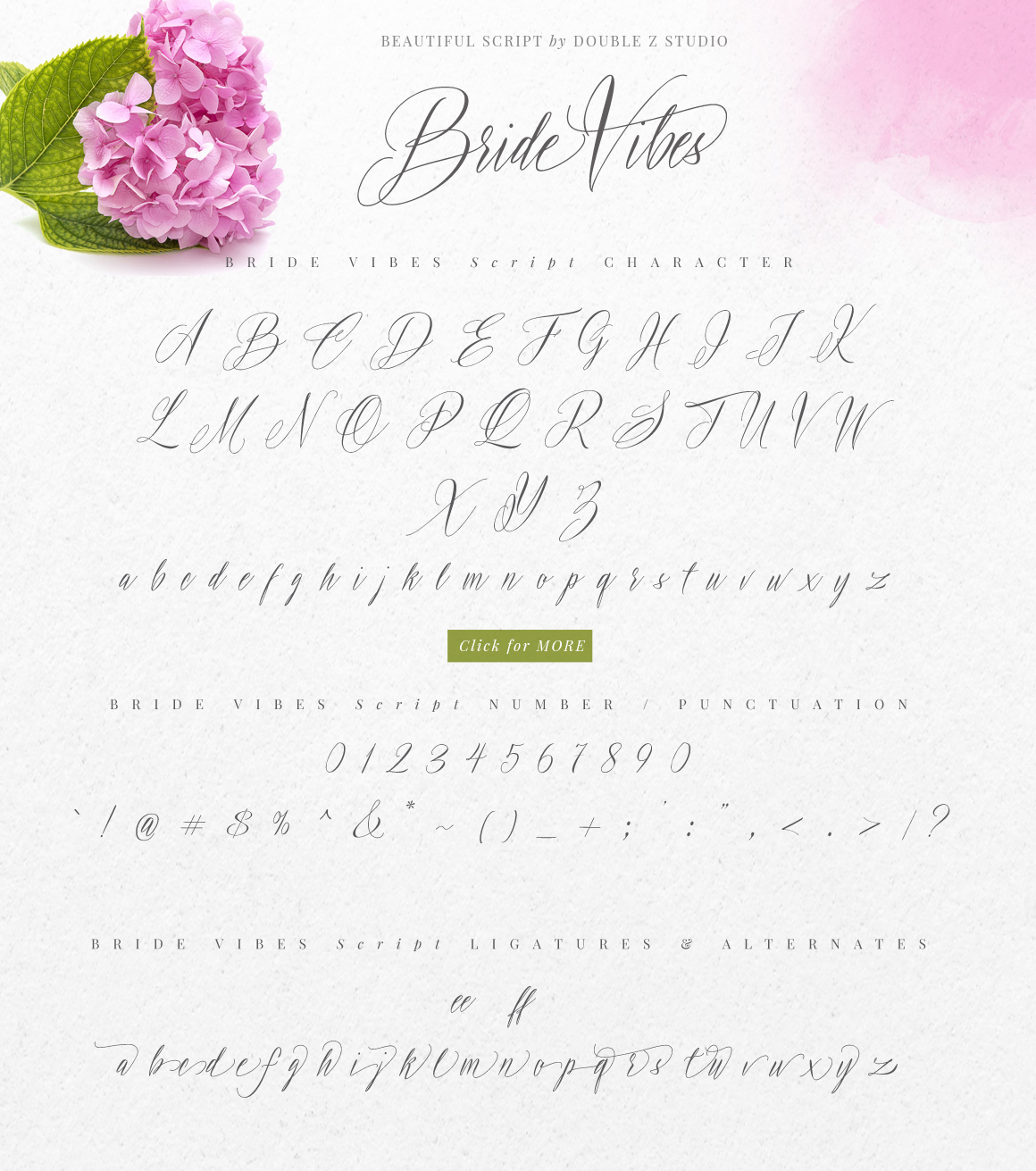 Bride Vibes Script example image 7
