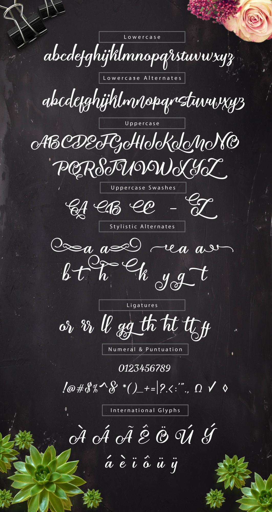 HIMDATH Script example image 4