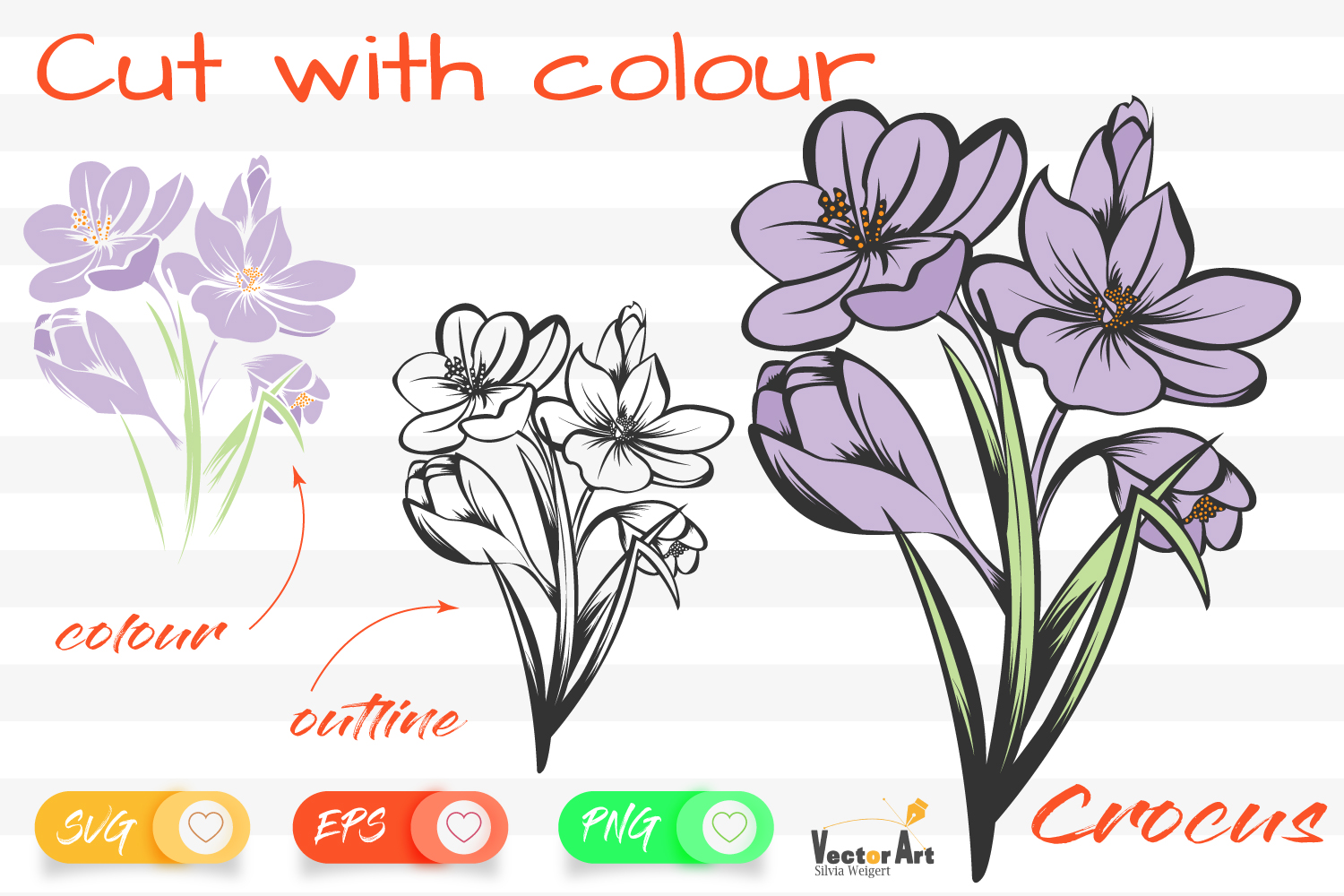 Crocus Flower - Cut File with 2 Layers example image 1