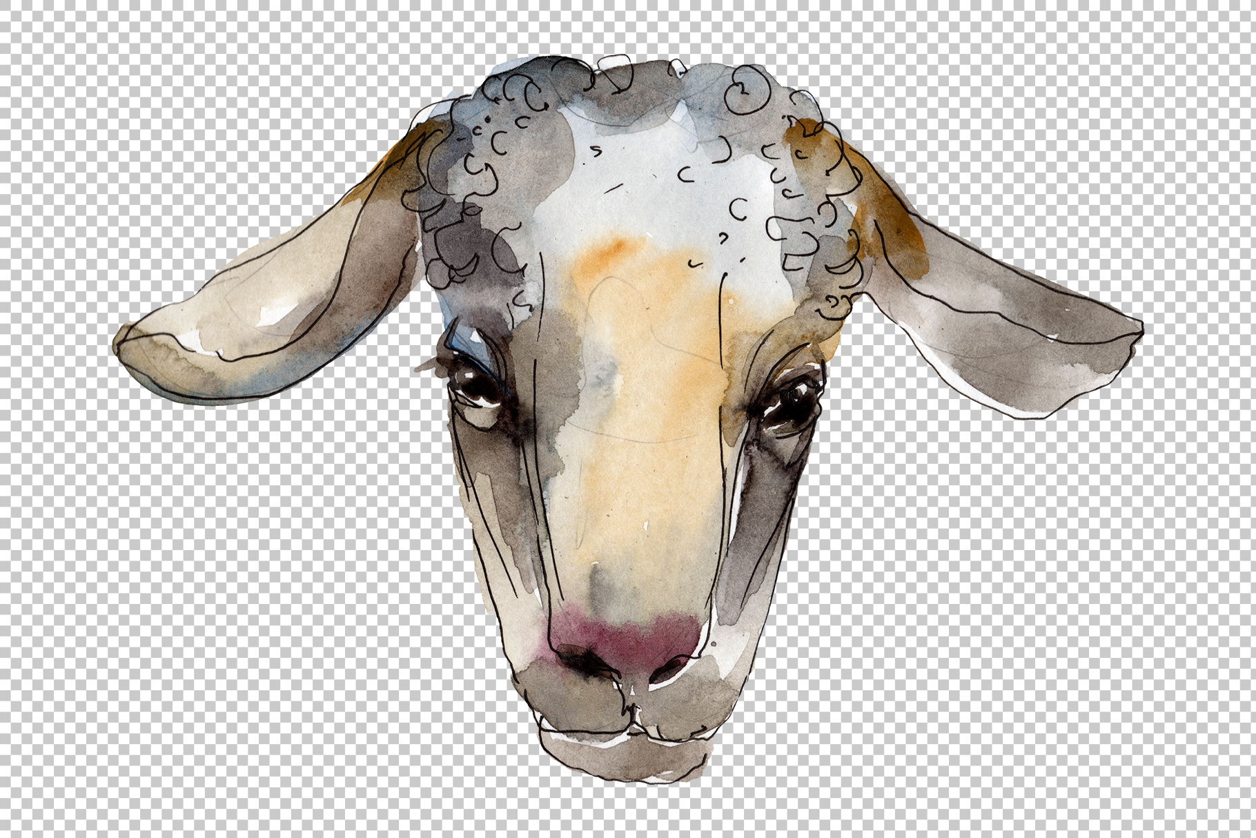 Farm animals Ram head Watercolor png example image 8
