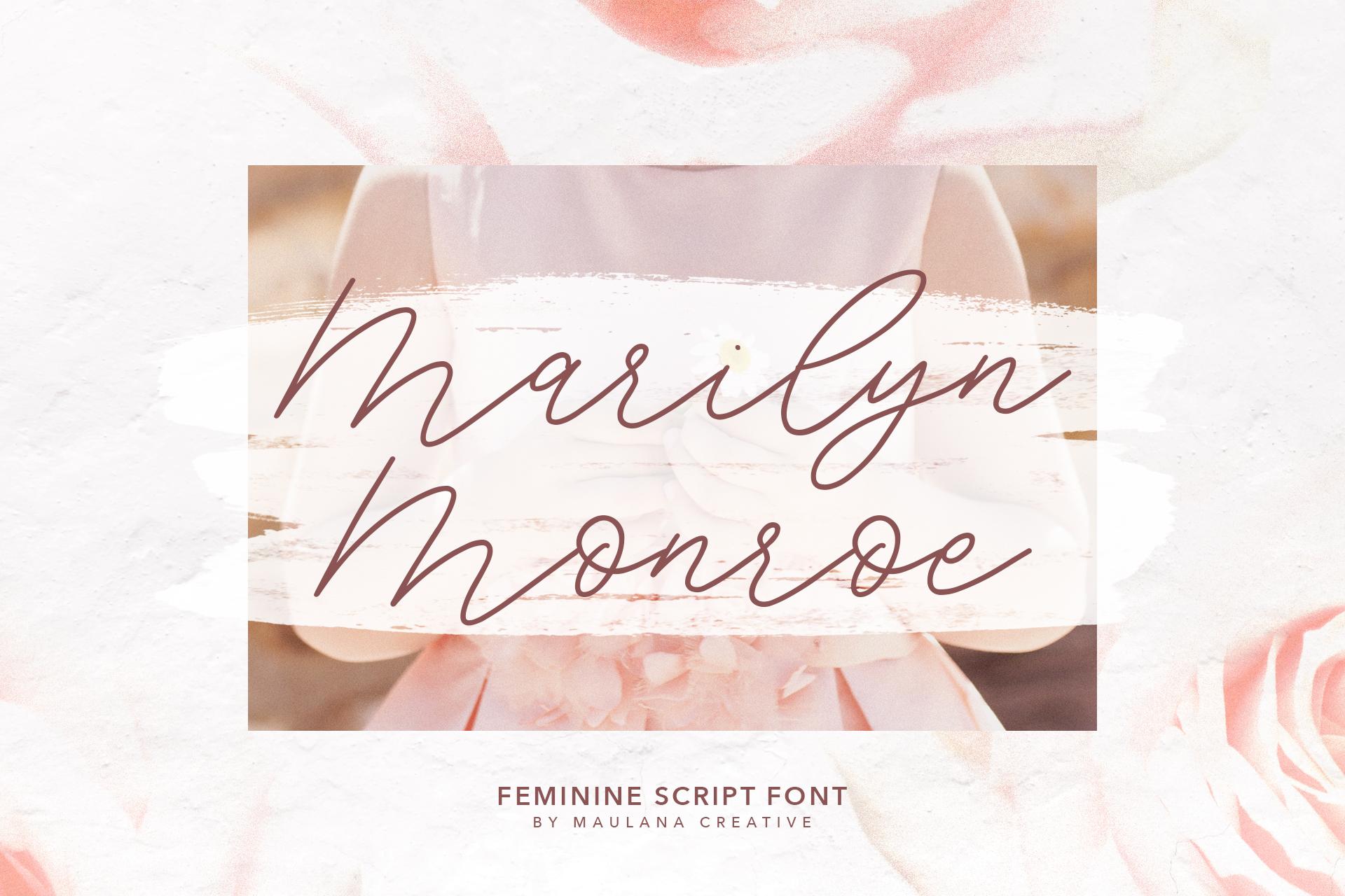 Southwide Feminine Script Font example image 9