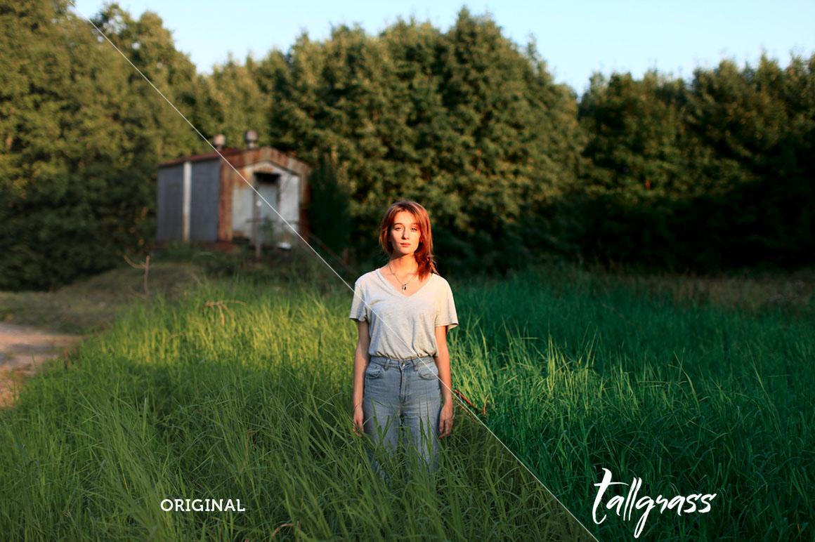 Tallgrass Photoshop Action example image 5