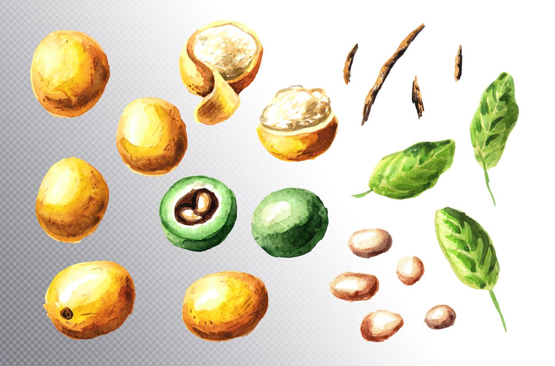 Marula example image 6