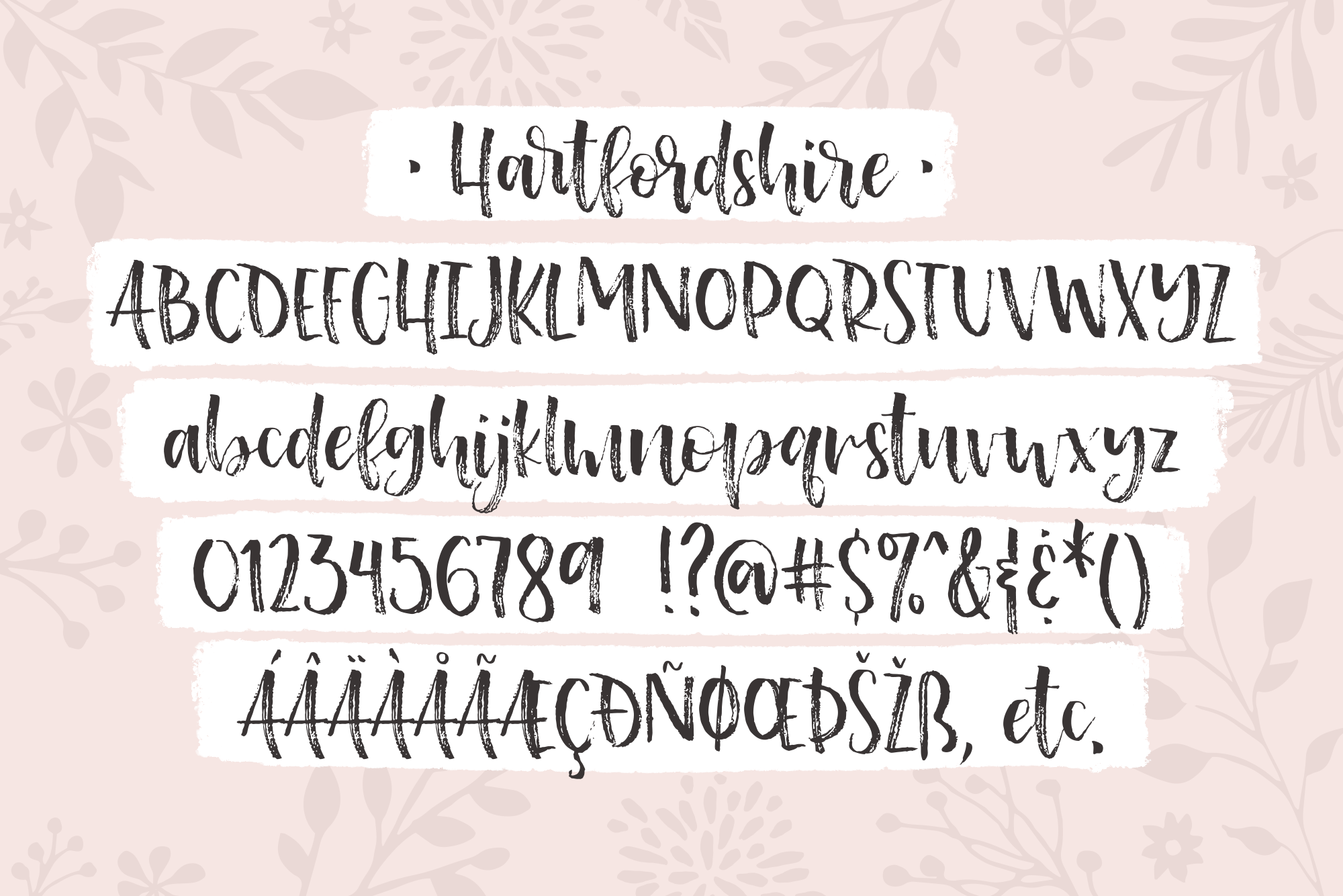 Hartfordshire, a shabby chic farmhouse font example image 2