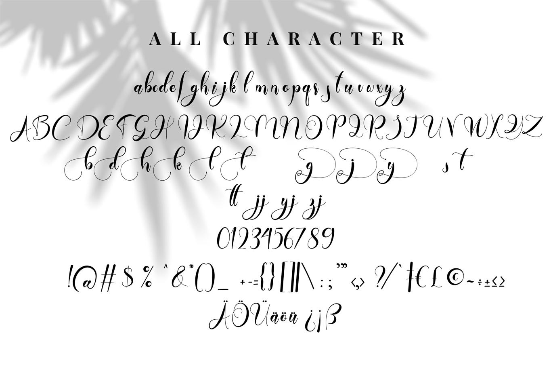 Daytone | Stylist Script Font example image 6