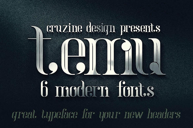 temu - Modern Font example image 5