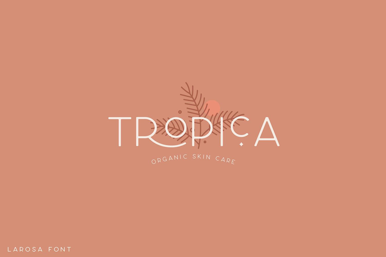 Larosa Sans- 7 Elegant Typeface example image 7