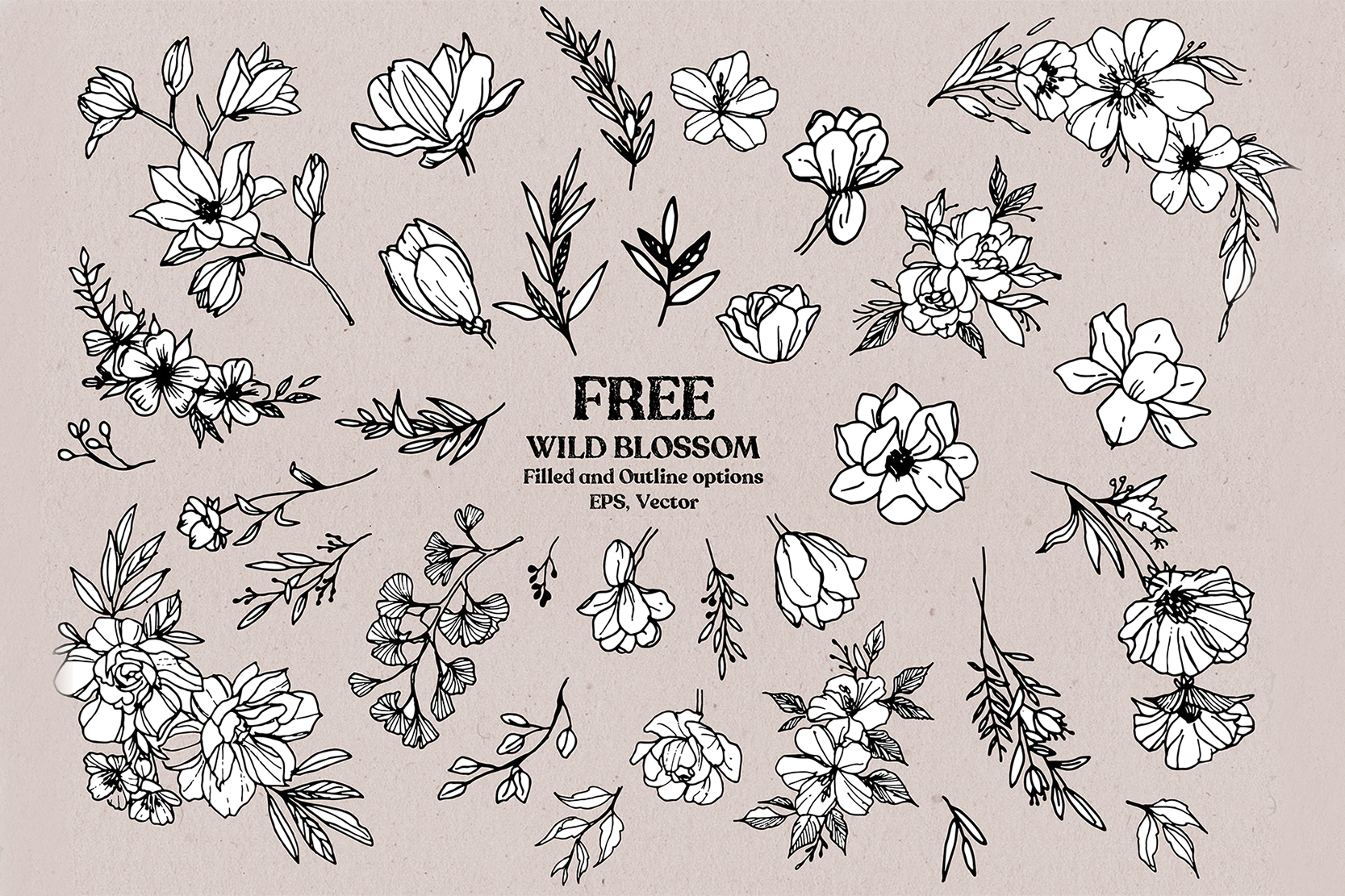 Wild Blossom - Hand sketched Floral & Botanical elements example image 3