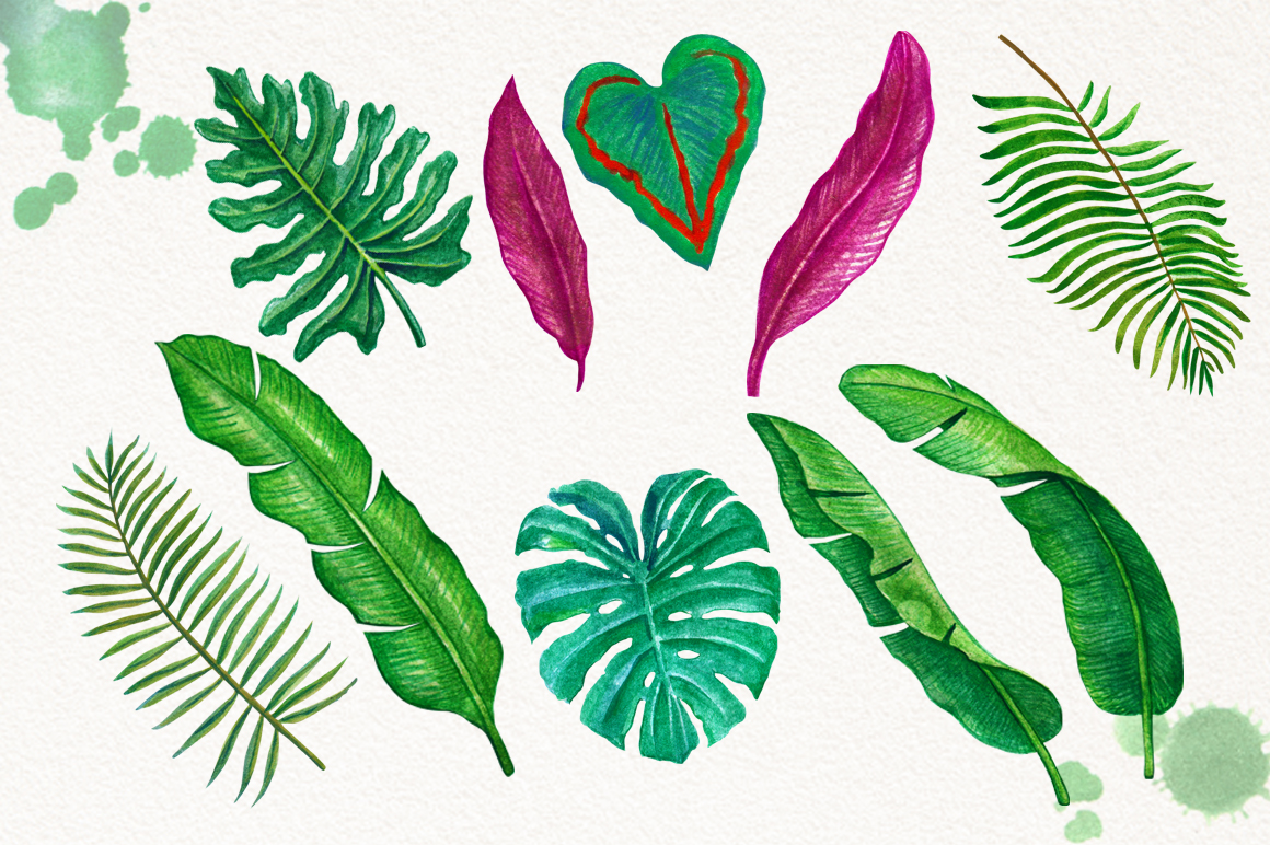 Tropical Leaves in the Jungle example image 4
