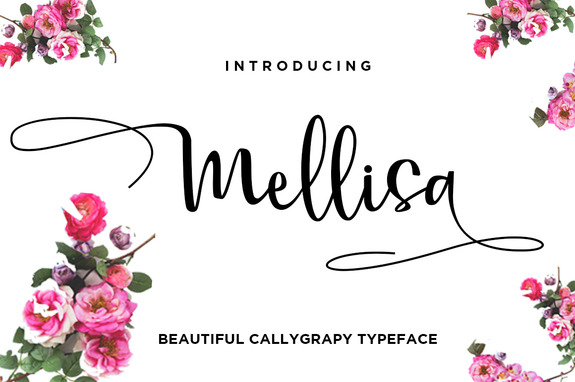 Mellisa Calligraphy Font example image 1