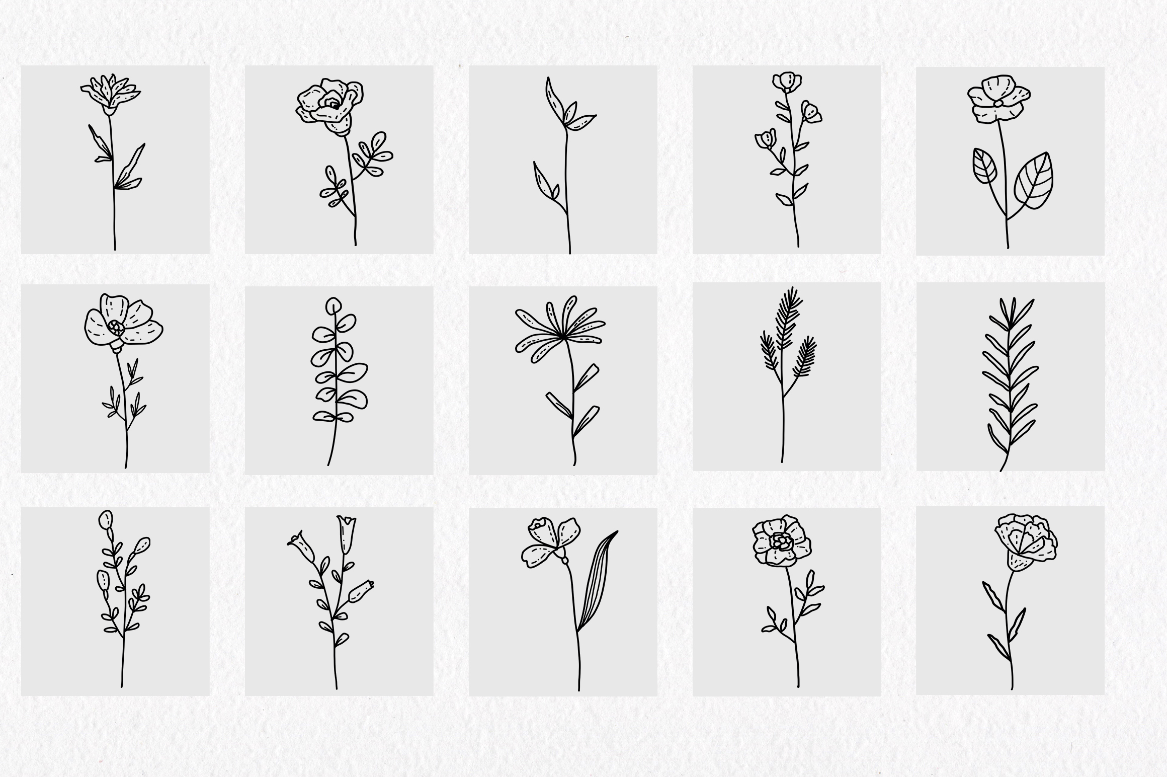 Floral and herbal elements. Hand drawn botanical art. example image 9