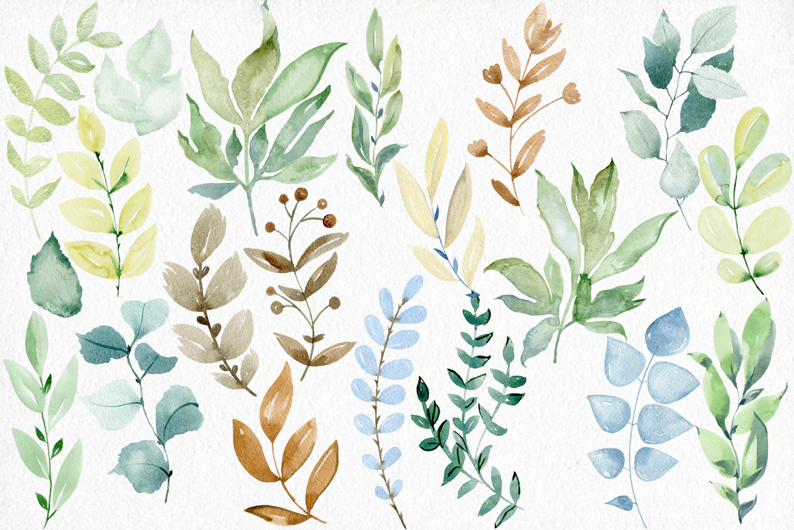 Watercolor leaves clipart. example image 6