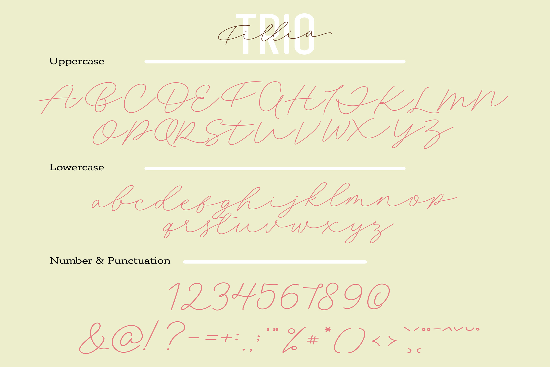 Filia Trio - Script, Sans, and Bold example image 10