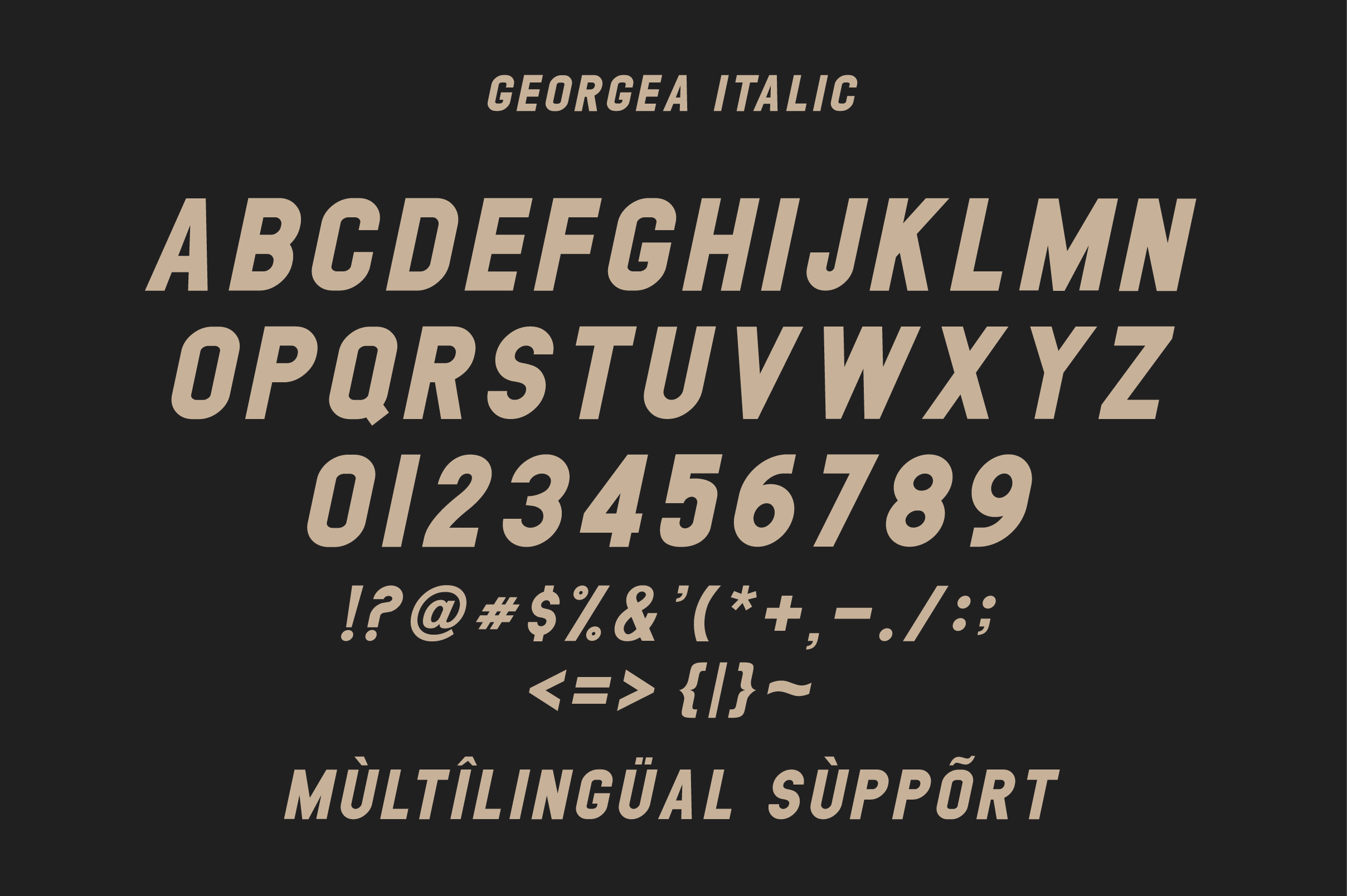 GEORGEA ALL CAPS FONT FAMILY WITH EXTRAS example image 14