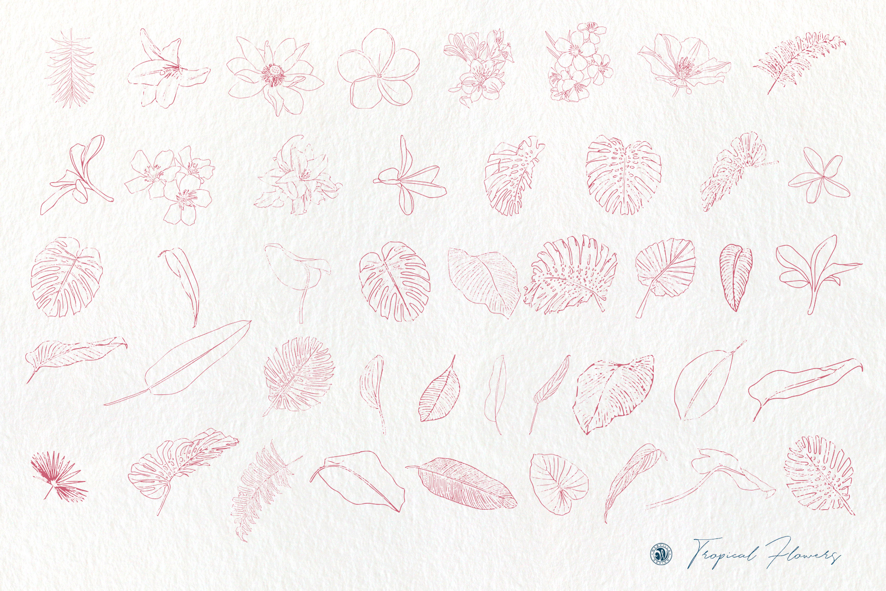Tropical Flowers example image 6