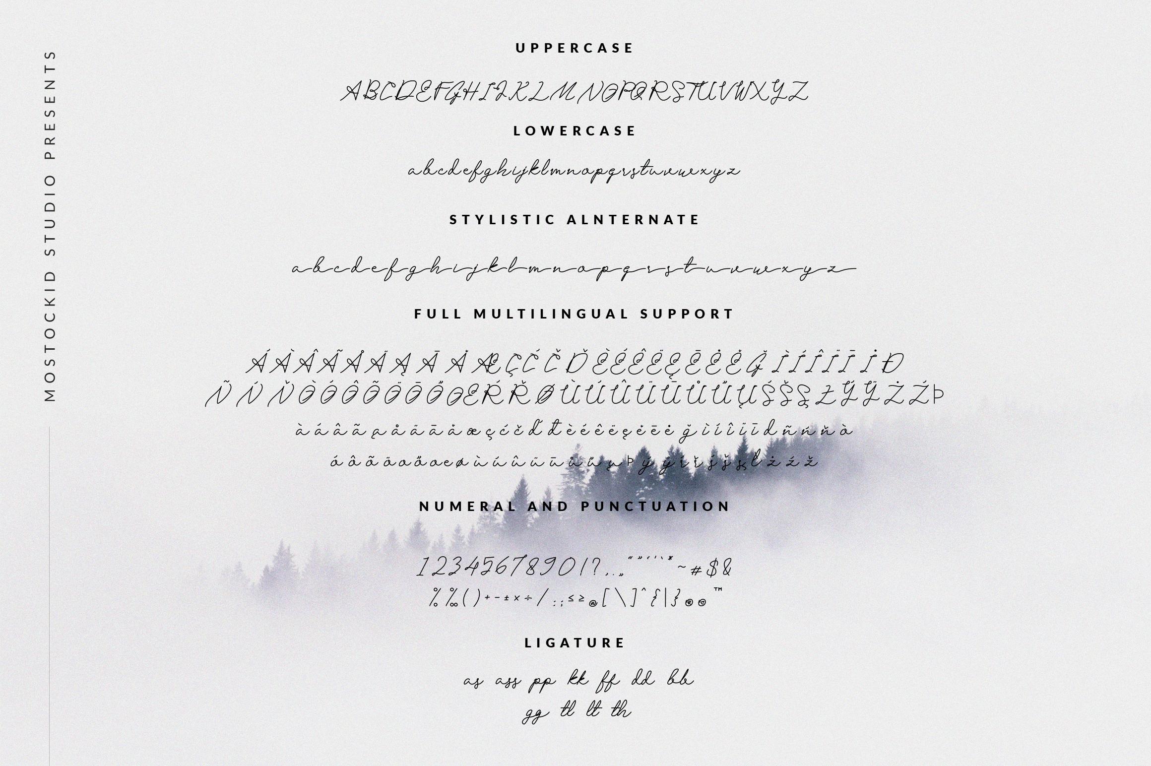 San Bernardino Script example image 7